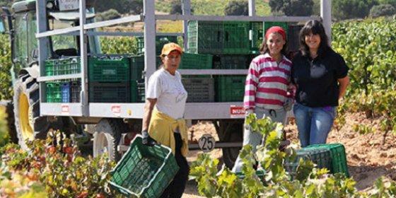 Los europeos quieren más agricultura familiar, según el Eurobarómetro