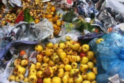 El 79% de los extremeños tira a la basura alrededor de 5 kg de alimentos al mes