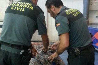 El SEPRONA en Sevilla, cierra 2015 con 203 investigaciones penales y 3.893 actuaciones administrativas