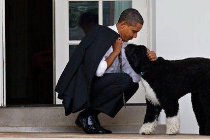 El hijo de John F. Kennedy y Marilyn Monroe intenta secuestrar a un perro de Obama