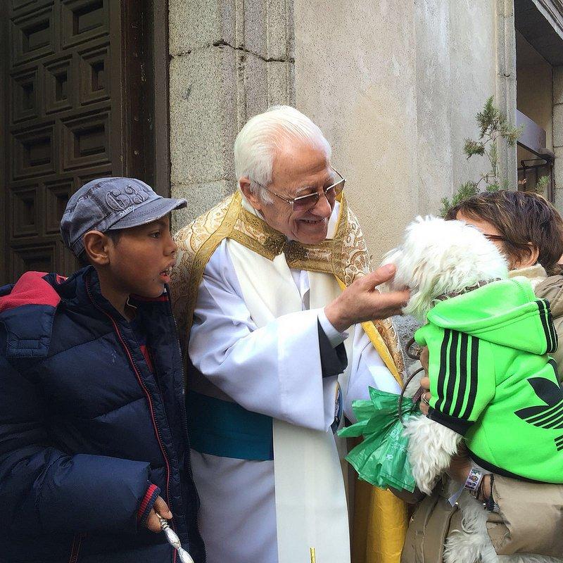 Padre Ángel bendice animales
