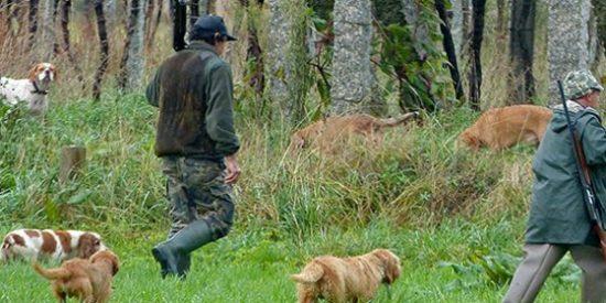 Admitidos y excluidos en el sorteo de la oferta pública de caza para la próxima temporada en Extremadura