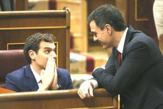 Pedro Sánchez le está comiendo el tarro a Albert Rivera para que le haga presidente del Gobierno