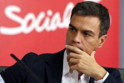 Mala suerte, Pedro Sánchez