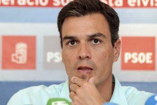 """""""Pedro Sánchez no es un candidato, es un despropósito"""""""