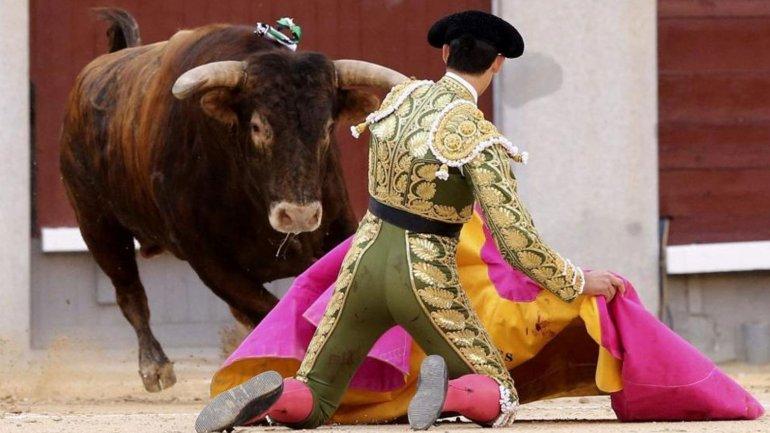 Facebook rectifica y suprime la opción de denunciar fotografías donde aparezcan corridas de toros