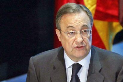 Florentino Pérez: ACS logra obras en la mayor fábrica de fertilizantes de Egipto por 315 millones