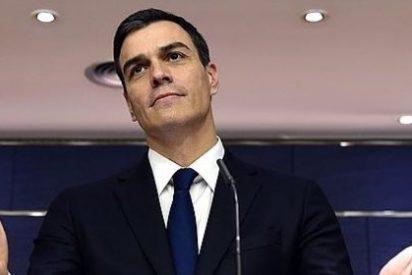 """Sostres sobre Sánchez: """"Es una absurda cebra enamorada de los leones de Podemos"""""""
