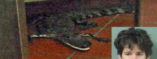 El tipo sin coco lanza a un cocodrilo por la ventana de un restaurante