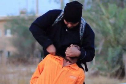 El verdugo gigante del ISIS le corta la cabeza a un musulmán chiíta
