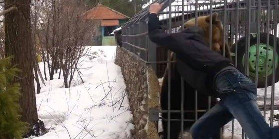 [VÍDEO] Así le arranca un oso enjaulado el brazo al molesto borrachuzo
