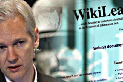 """WikiLeaks: la ONU """"falla que la detención de Julian Assange es arbitraria"""""""