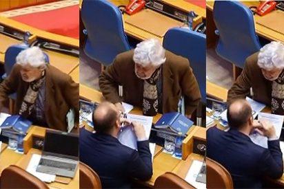 """Beiras vuelve a disfrazarse de 'troglodita' y la emprende a golpes con los escaños del PP: """"Os echaremos del país"""""""