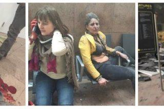 """El episcopado español condena los atentados de Bruselas contra """"el sagrado tesoro de la vida"""""""