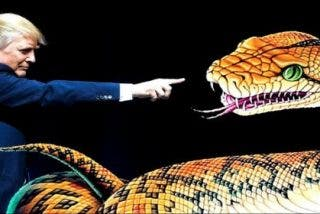 El vídeo de Donald Trump y la 'serpiente' que los 'buenistas' no quieren que veas
