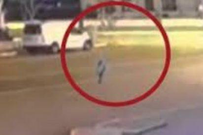 El alienígena con peluca que se pasea por la calle como Pedro por su casa