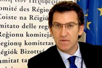 Alberto Núñez Feijóo se reafirma en anular el anterior concurso eólico gallego