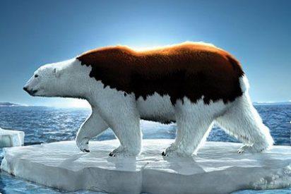 Calentamiento: El Planeta Tierra tuvo un subidón récord en febrero de 2016