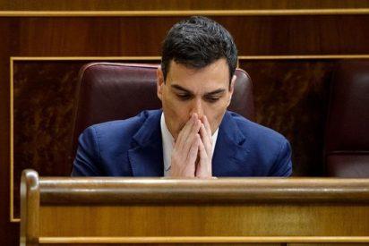 """Luis Ventoso se parte la caja con los conocimientos económicos de Pedro Sánchez: """"Estudió en la guagua de Nicolás Maduro"""""""