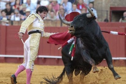 El mundo del toro se moviliza
