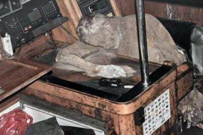 Aparece momificado en el interior de su yate un año después de naufragar