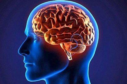 ¿Sabías que la contraseña del futuro en Internet irá escondida en tu cerebro?