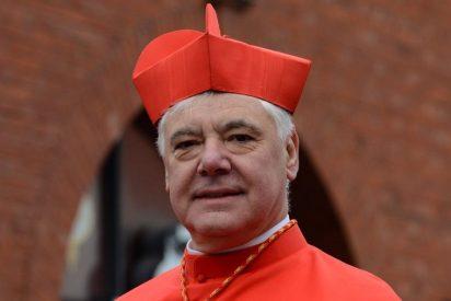 """""""Los procesos en Doctrina de la Fe son contrarios a la justicia natural y tienen que reformarse"""""""