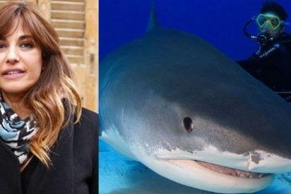 Mariló arrasa con una foto del tiburón tigre en Bahamas