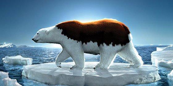 ¿Sabías que Groenlandia está favoreciendo una Europa más húmeda?