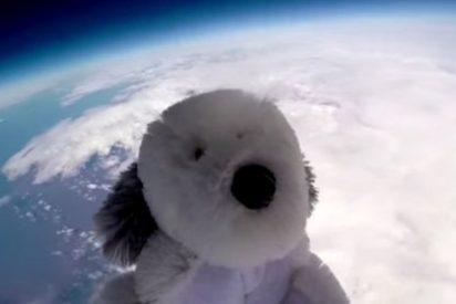 Se busca perrito de peluche visto por última vez en la estratosfera