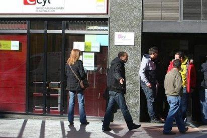La Junta destinará 36 millones de euros en 2016 para el empleo joven