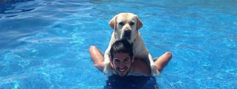 Isco descubre su particular relación con su perro Messi