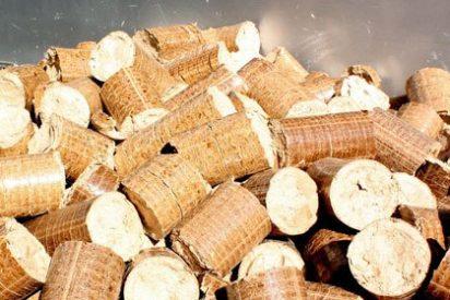 ¿Cuáles son los beneficios de la calefacción con biomasa?