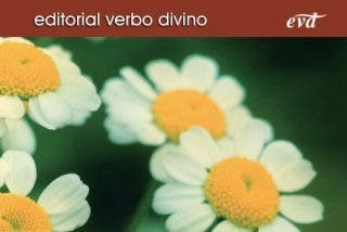 Nueva edición de los Cursos de Verano de Verbo Divino
