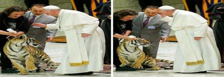 El Papa se lleva un susto con un tigre