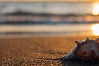 El eco del mar (y de los CIE)