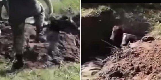 Así entierran vivo al sufrido separatista unos sádicos soldados ucranianos