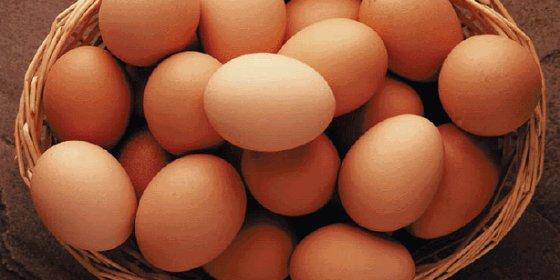 ¿Sabias que puedes comer un huevo al día y no pasa nada?