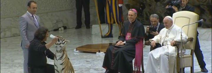 """El Papa, a los feriantes: """"Sean testigos de Cristo que está siempre en camino para encontrar a los más alejados"""""""