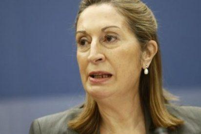 Ana Pastor, mujer de consenso