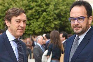 Ayude al 'miope' canario Pedro Quevedo a distinguir entre Rafael y Antonio Hernando