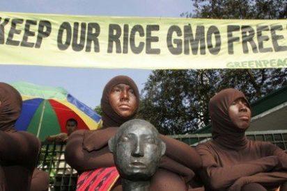 """Un centenar de premios Nobel acusa a Greenpeace de """"crímenes contra la humanidad"""""""
