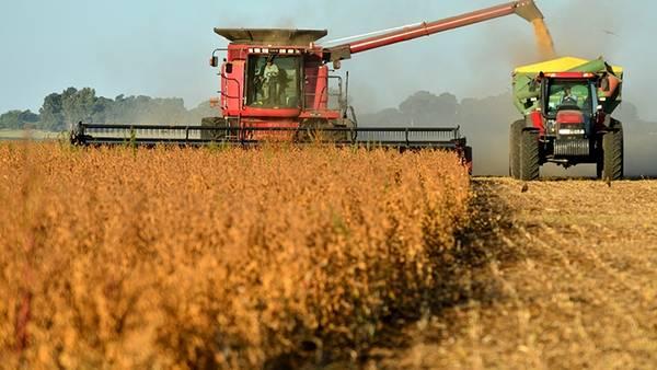 Aumenta un 37 % la cosecha de cereal y supera los 7,6 millones de toneladas