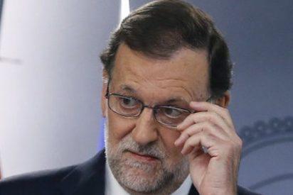 Mariano Rajoy tiene un plan secreto para llevar a todos al huerto