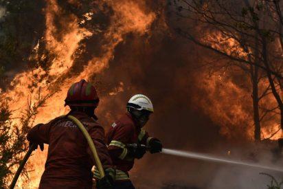 """El Papa, """"consternado"""" por la oleada de incendios en Madeira"""