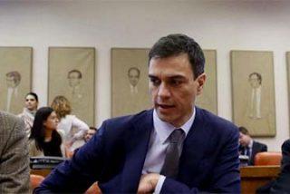 """Hermann Tertsch: """"Personajes como Pedro Sánchez y su trío de tristes utilleros solo ven la política española en la clave de la revancha con la derecha"""""""