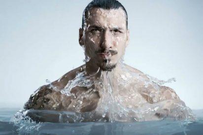 """Ibrahimovic: """"Estoy acostumbrado a ganar títulos, no he venido aquí a perder el tiempo"""""""