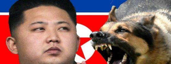 El feroz consejo de Kim Jong-un para comer carne de perro con mejor sabor