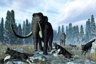 La falta de agua provocó la extinción de los mamuts en Alaska