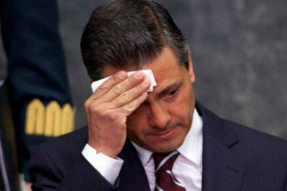 Peña Nieto, presidente de México, plagió el 30% de su tesis y lo han pillado